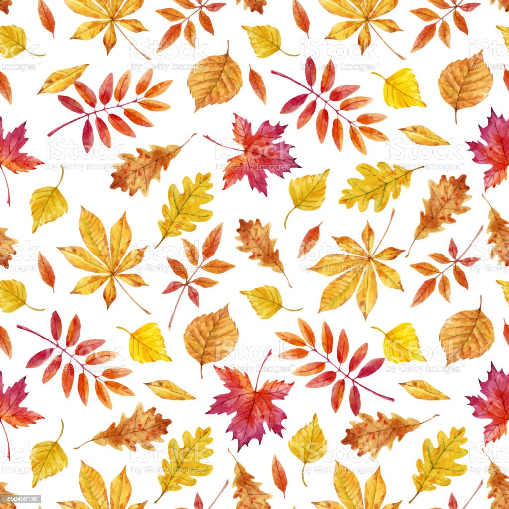 Watercolor autumn leaves vector pattern vector art illustration