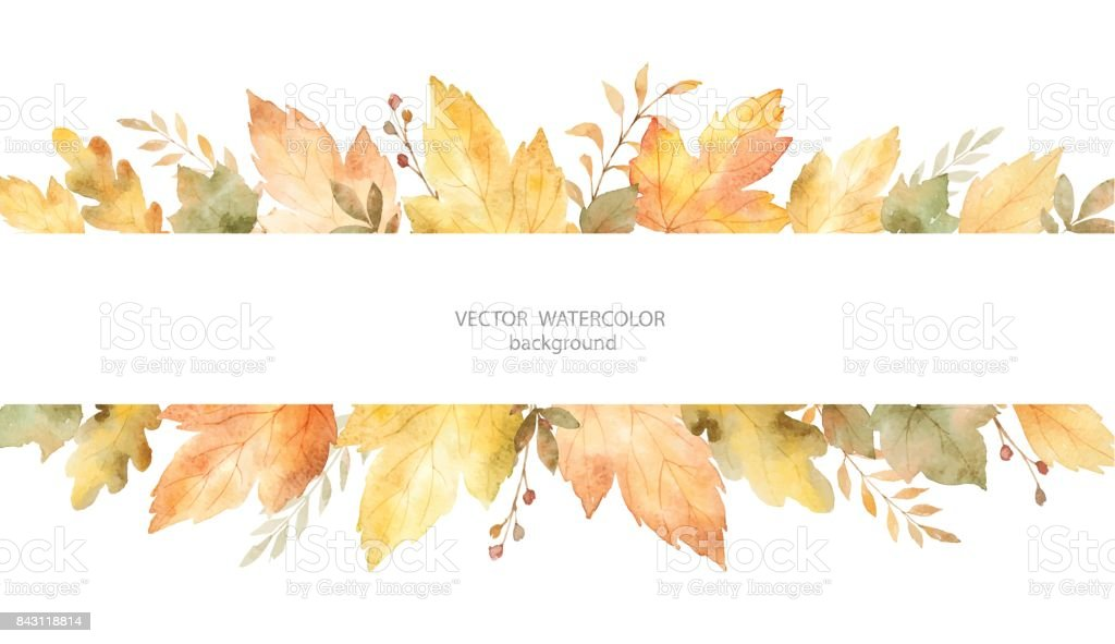 Watercolor autumn vector banner of leaves and branches isolated on white background. - illustrazione arte vettoriale