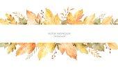 葉や枝は、白い背景で隔離の水彩秋ベクター バナー。