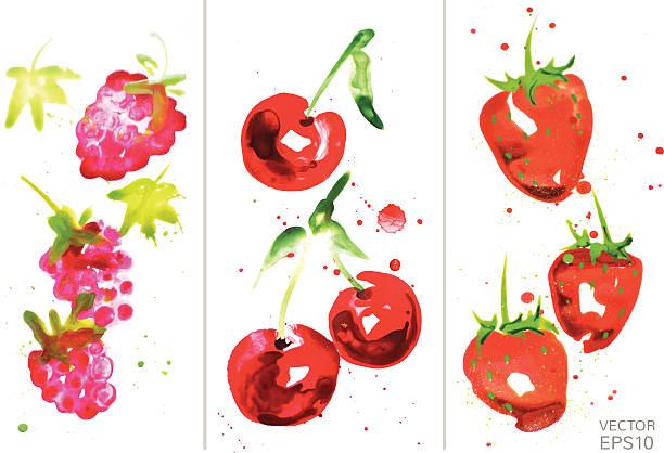 bildbanksillustrationer, clip art samt tecknat material och ikoner med watercolor berry set - hallon