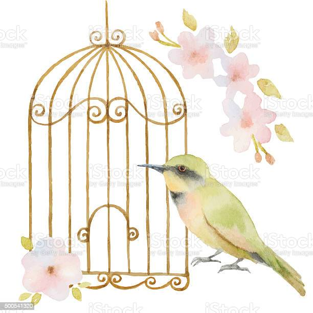 Watercolor bird cage and flowers vector id500541320?b=1&k=6&m=500541320&s=612x612&h=ub1yxdbtm ytfn0ewzbhhc8a6zh6wh14ardfpuml 0g=
