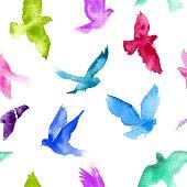 Watercolor birds. - Vector