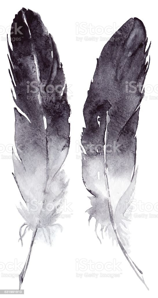 Watercolor black and white feather pair vector set isolated vector art illustration