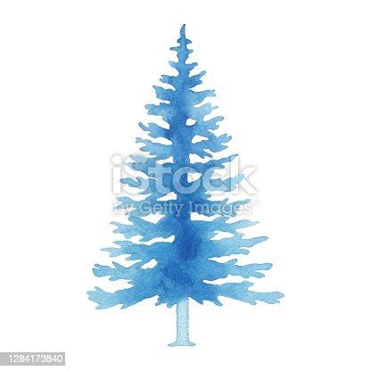 istock Watercolor Blue Pine Tree 1284173840