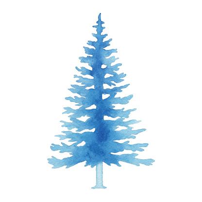 Watercolor Blue Pine Tree