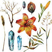 Watercolor Boho Chic elements: dry branch, tiger lily flower, magic crystals, feathers and wild herbs isolated on white background. Hand drawn illustration in trendy vintage style.