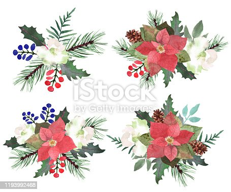 Watercolor boquets with fir branches, red berry, poinsettia, Christmas elements. Horizontal winter decorative composition for Happy New Year and Christmas print, wallpaper, textile. Vector