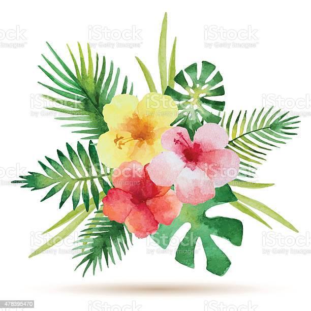 Watercolor bouquet vector id478395470?b=1&k=6&m=478395470&s=612x612&h=0kgbmcnjrdfeblmirjxtrig3vd4wbuar9xxuvseibsk=