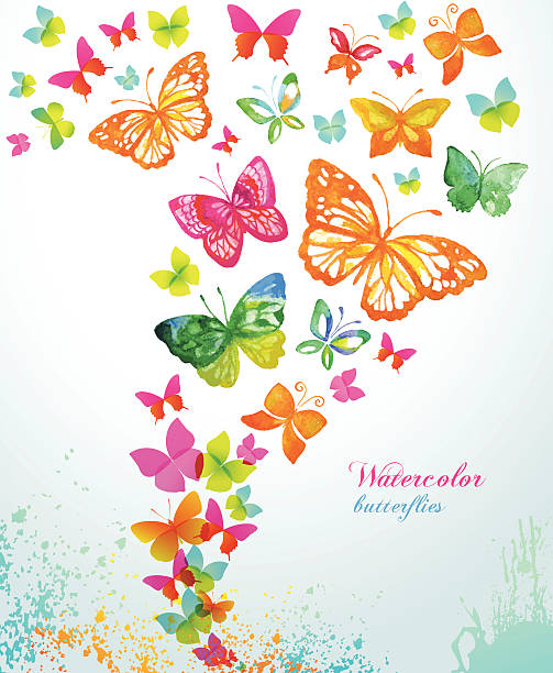 watercolor butterflies and splash. vector background. - butterfly stock illustrations