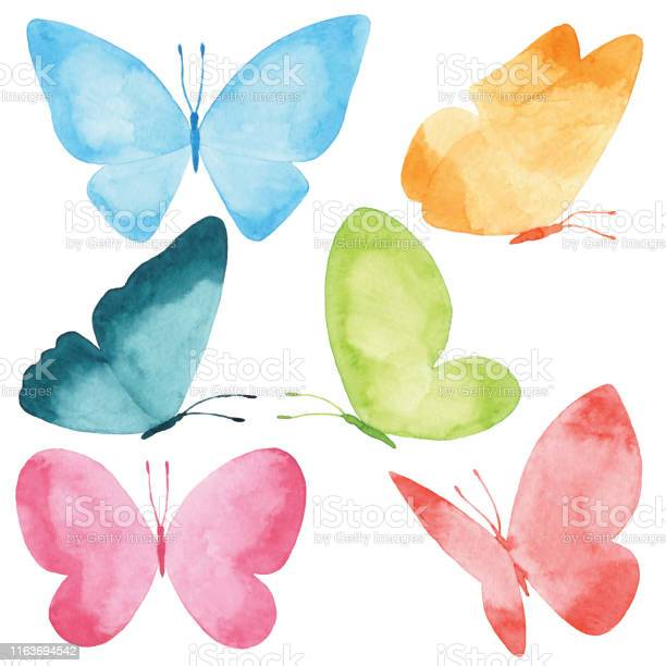 Watercolor butterflies vector id1163694542?b=1&k=6&m=1163694542&s=612x612&h=xw9wq5iwtsjw frxyjnerprj1byghnoguiotgq18twg=