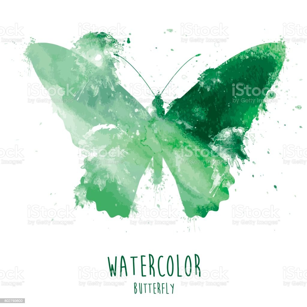 Watercolor Butterfly - Illustration vector art illustration