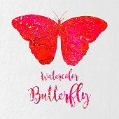 A vector illustration of a watercolor butterfly with the words watercolor butterfly under it.