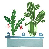 Watercolor cacti, succulents, home flowers, houseplants in box isolated on white background - vector artwork