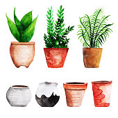 Watercolor Cactus With Pot Collection
