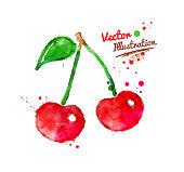Vector watercolor hand drawn illustration of cherries.