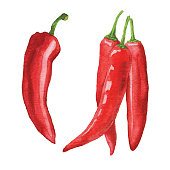 Vector illustration of chili pepper.