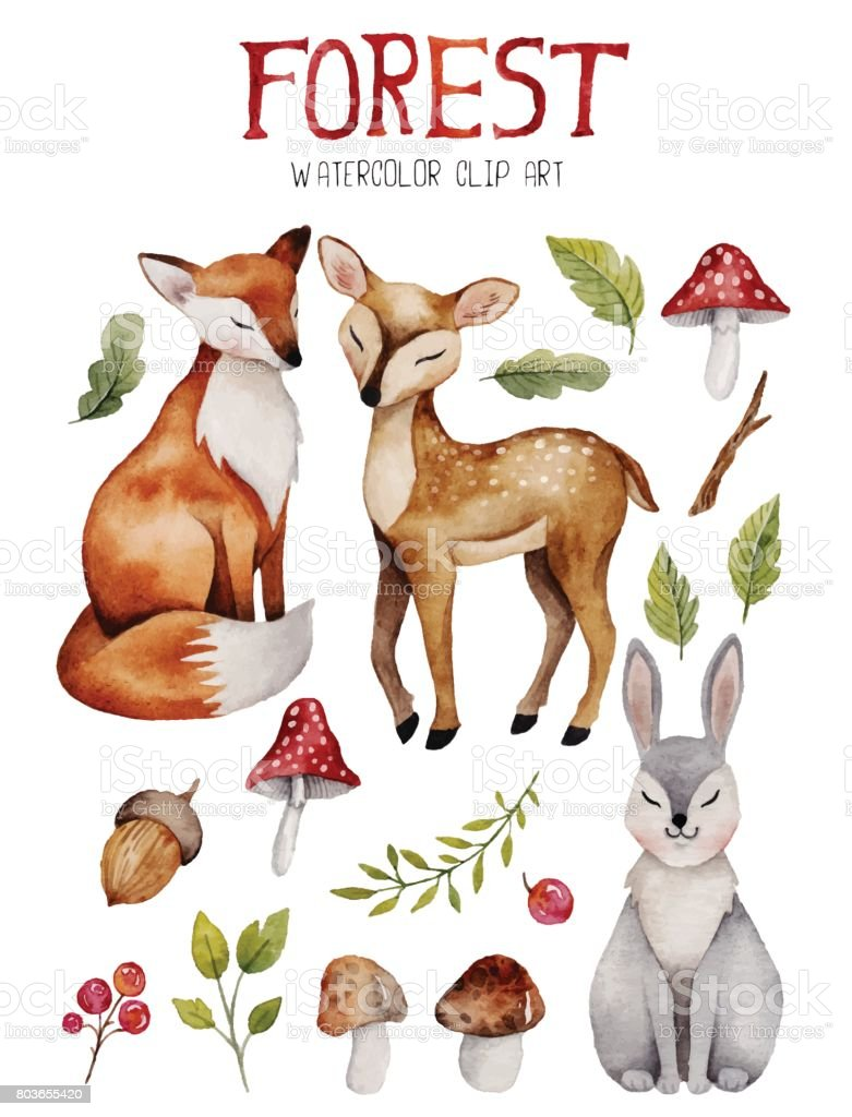 Watercolor clipart with cute forest elements.