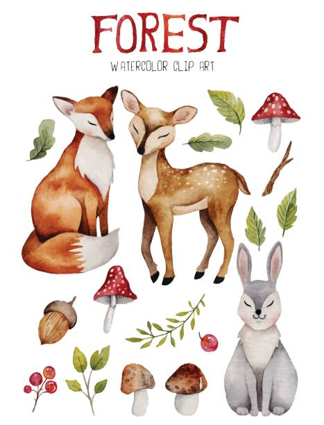 watercolor clipart with cute forest elements. - baby animals stock illustrations