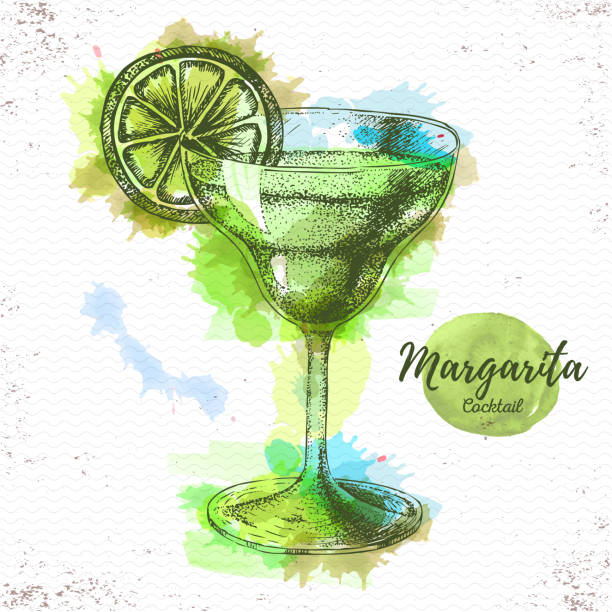 Watercolor cocktail margarita sketch. Cocktail vector illustration Watercolor cocktail margarita sketch. Cocktail vector illustration margarita stock illustrations