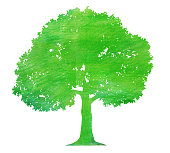 Watercolor color pencil texture green tree silhouette
