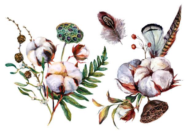ilustrações de stock, clip art, desenhos animados e ícones de watercolor cotton and greenery decorations - pena de pássaro algodão