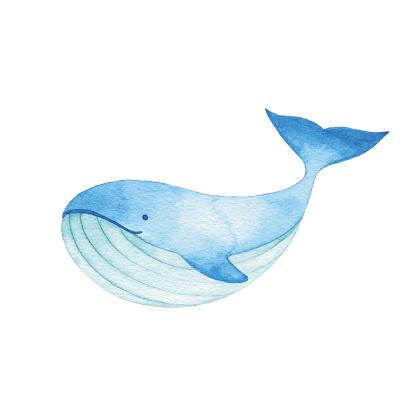 Watercolor Cute Blue Whale