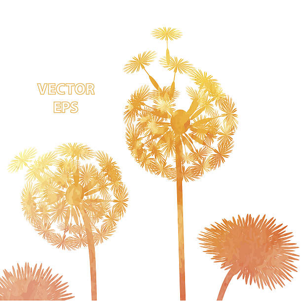 Royalty Free Dandelion Seed Clip Art, Vector Images