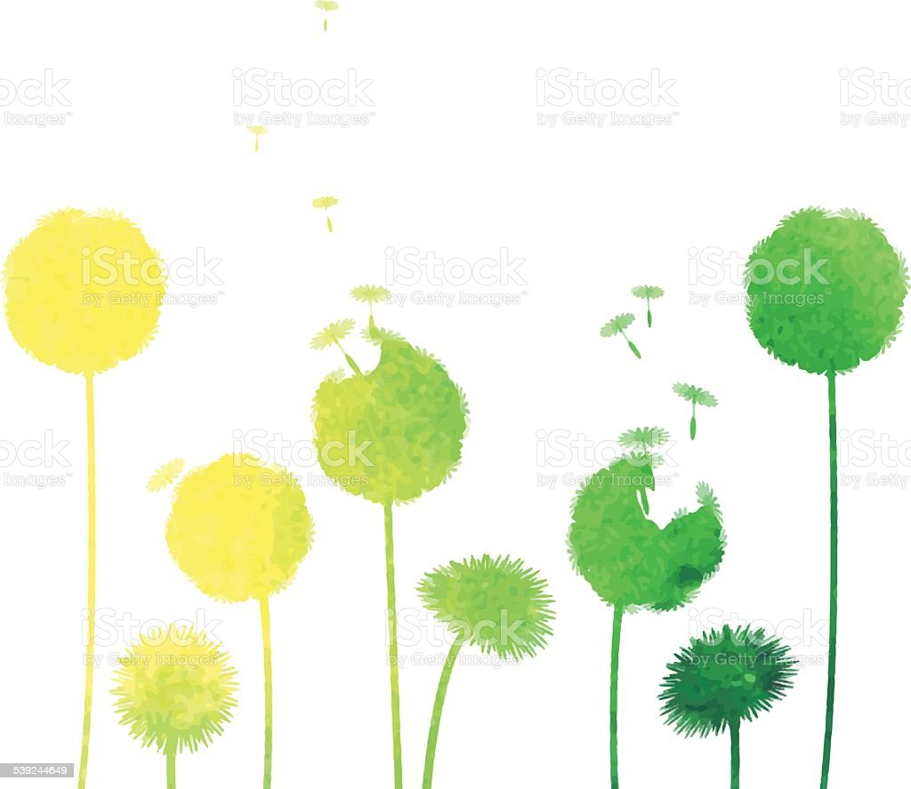 watercolor dandelion background royalty-free watercolor dandelion background stock vector art & more images of anniversary