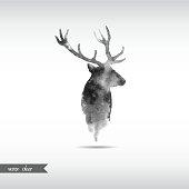 Watercolor deer head - Vector