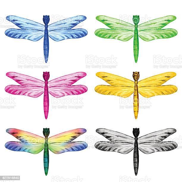Watercolor dragonfly vector id622916840?b=1&k=6&m=622916840&s=612x612&h=vkx27qylk25xltcupmmkyq gvklaebr2dmmulf8r5ac=