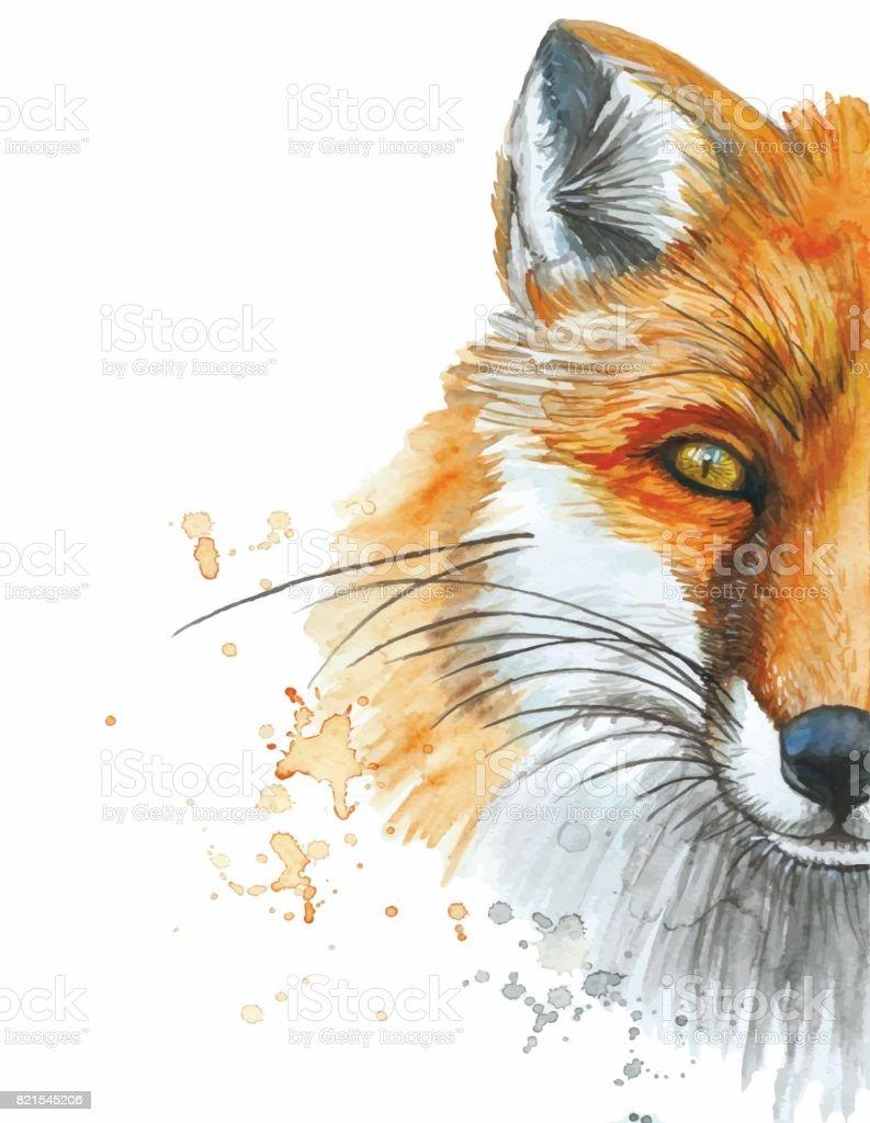 Acuarela, dibujo de un animal mamífero de un zorro, un zorro salvaje - ilustración de arte vectorial