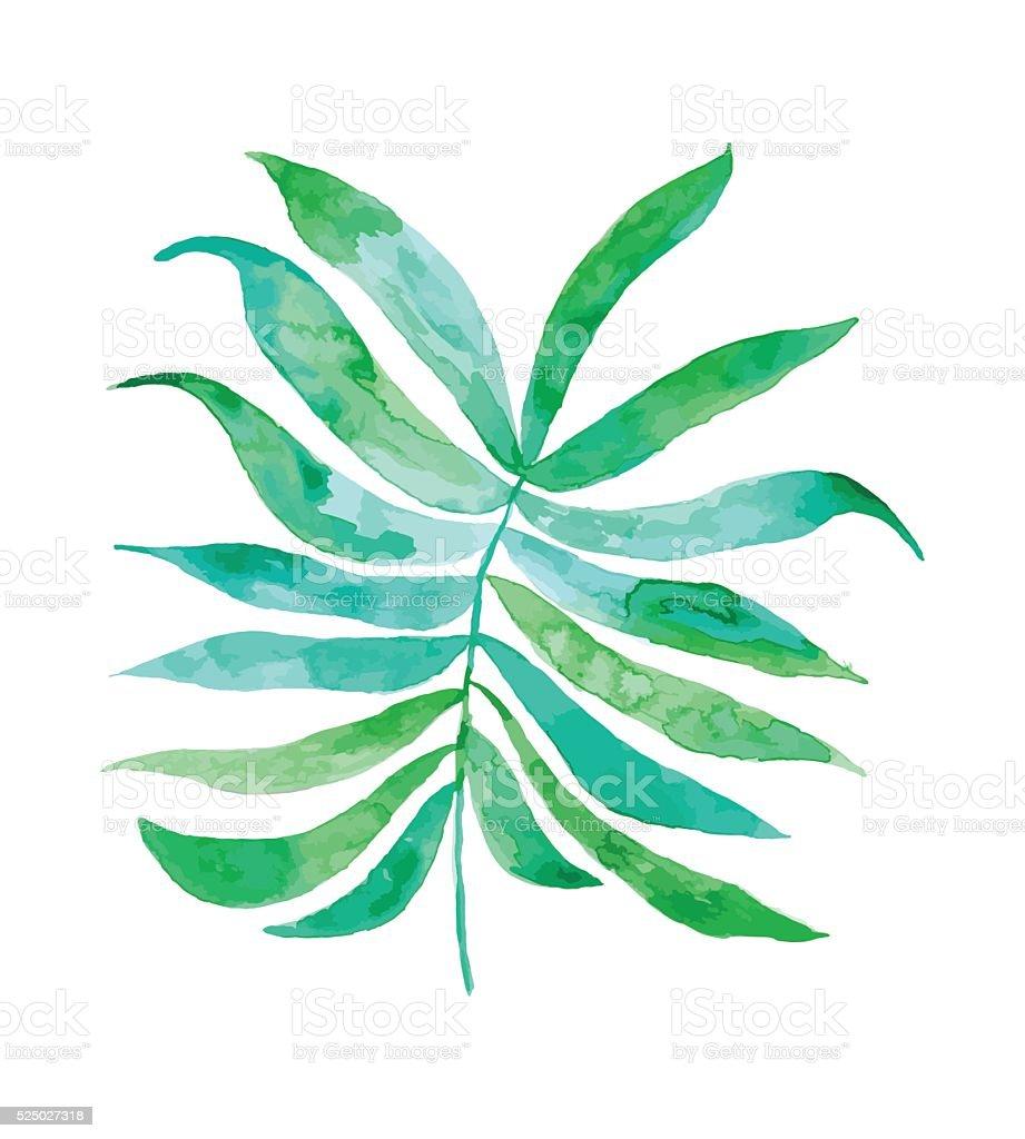 Aquarelle dessin - Illustration vectorielle