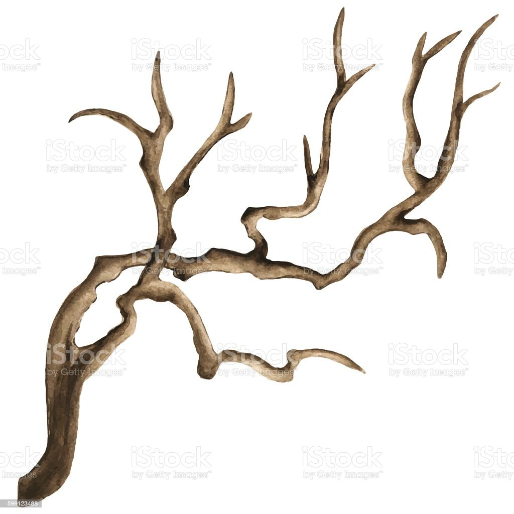 Watercolor driftwood vector art illustration