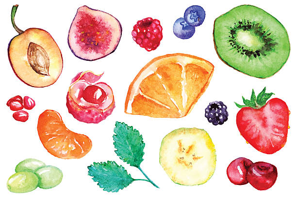 stockillustraties, clipart, cartoons en iconen met watercolor exotic fruit berry slice set isolated vector - bessen