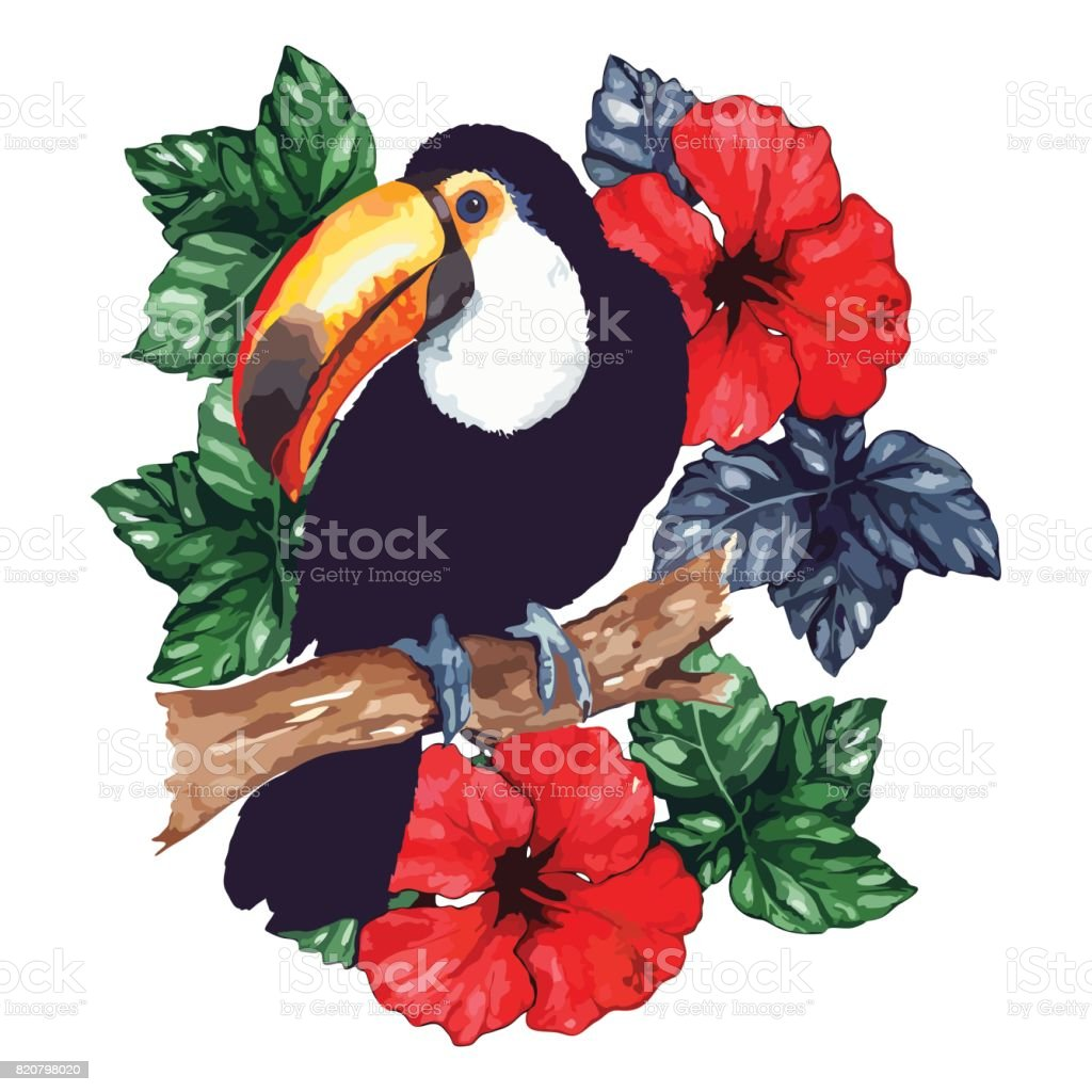 Watercolor exotic tropical animal bird toucan flower hibiscus...