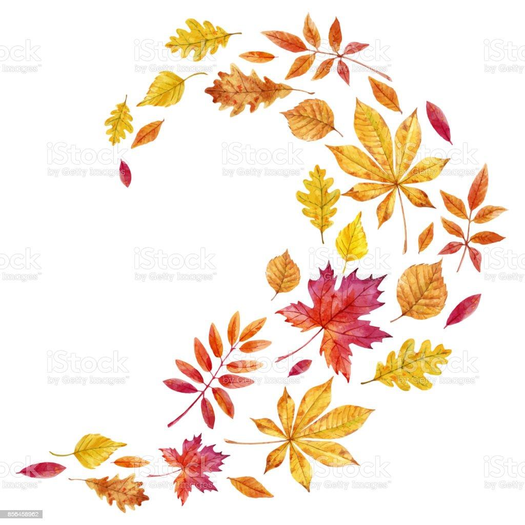 Fall Autumn Clip Art Images