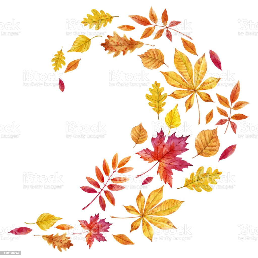 Watercolor fall leaves vector set vector art illustration