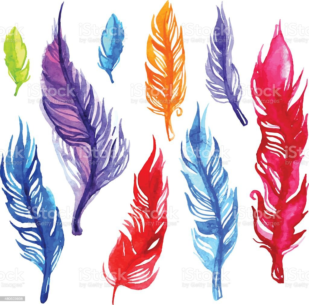 Watercolor feather set vector art illustration