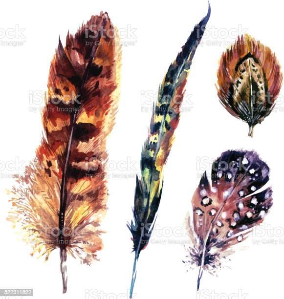 Watercolor feathers set vector id522311822?b=1&k=6&m=522311822&s=612x612&h=0ow5omrqhxsdyynaf 2gocr5vwkafs cwt 9fpmrx6c=