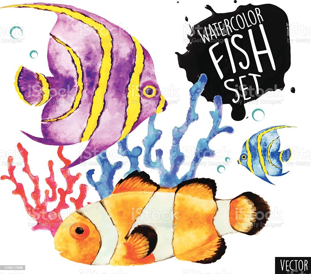 Watercolor Fish Vector Set vector art illustration