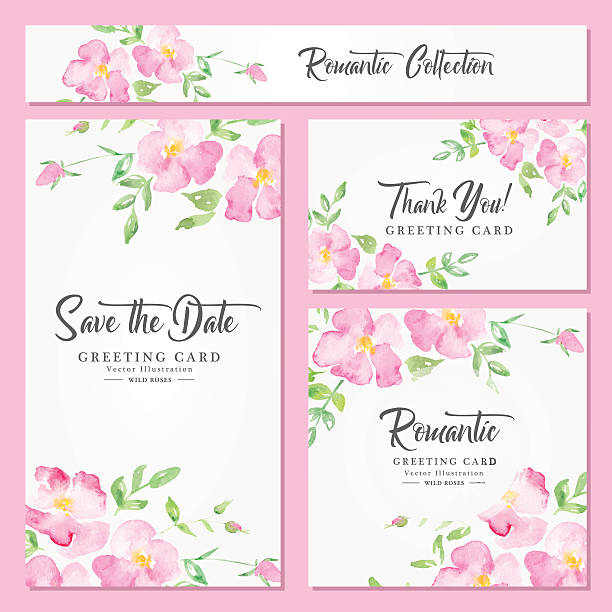 Watercolor floral background with pink wild roses Set of wedding, invitation or anniversary cards with romantic floral background and sample text. Wild roses - pink fragile flowers on a white background. Fresh romantic design wild rose stock illustrations