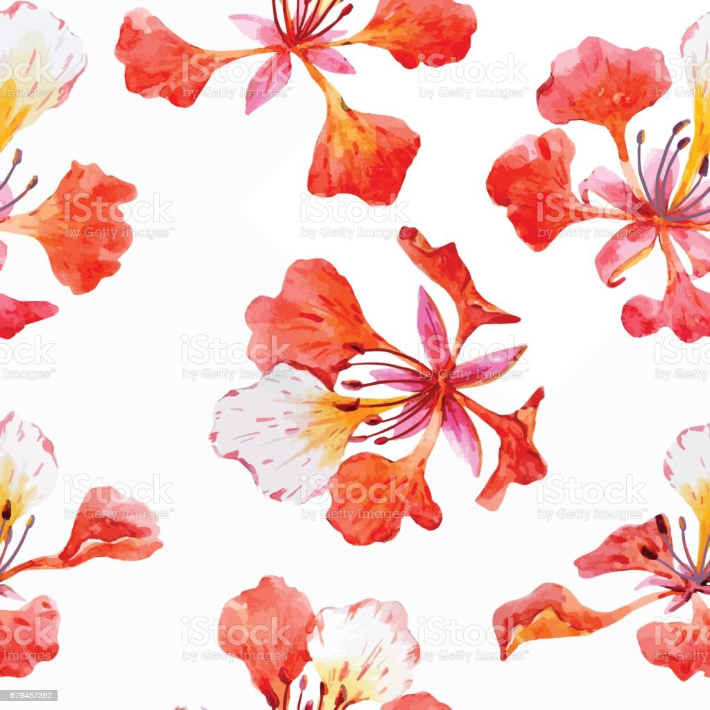 Watercolor floral pattern royalty-free watercolor floral pattern stock vector art & more images of backgrounds