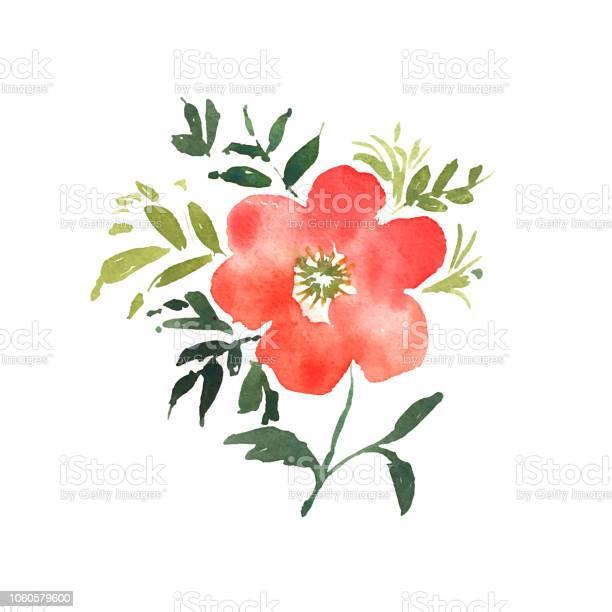 Watercolor flower red beautiful hand drawn rose design for invitation vector id1060579600?b=1&k=6&m=1060579600&s=612x612&h=81yfnr4eickfyszip54nrm0mwhdau2sqppuu5m9ufxw=