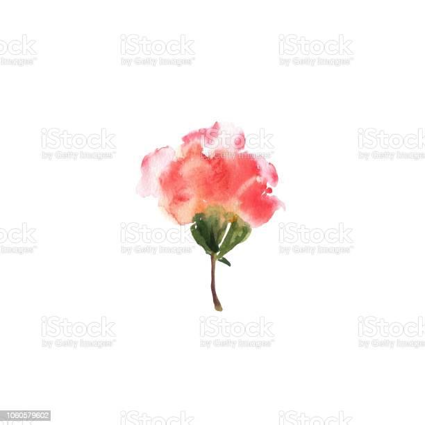Watercolor flower red beautiful hand drawn rose design for invitation vector id1060579602?b=1&k=6&m=1060579602&s=612x612&h=dxywogxsufakywonbdnwj0tci4f9rcqusetgr4pokok=