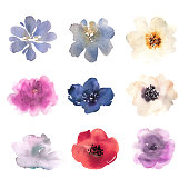 Watercolor flowers hand drawn colorful beautiful floral set with pink red blue blossom plant for cards prints and invitation. Vector