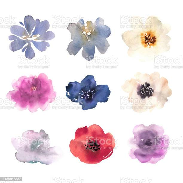 Watercolor flowers hand drawn colorful beautiful floral set with pink vector id1139848337?b=1&k=6&m=1139848337&s=612x612&h= 0zzui7zcvdrjwq05txo0rzsvms4osfh21iflja4n0s=