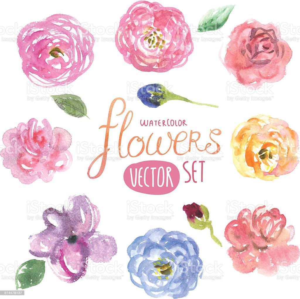 Цветы акварель вектор