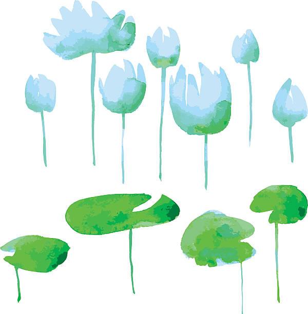 watercolor flowers kit for design. watercolor hand drawn element - seerosenteich stock-grafiken, -clipart, -cartoons und -symbole