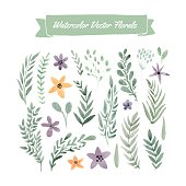 Set of handpainted watercolor vector flowers and leaves. Design element for summer wedding, spring congratulation card. Perfect floral elements for save the date card. Unique artwork for your design.