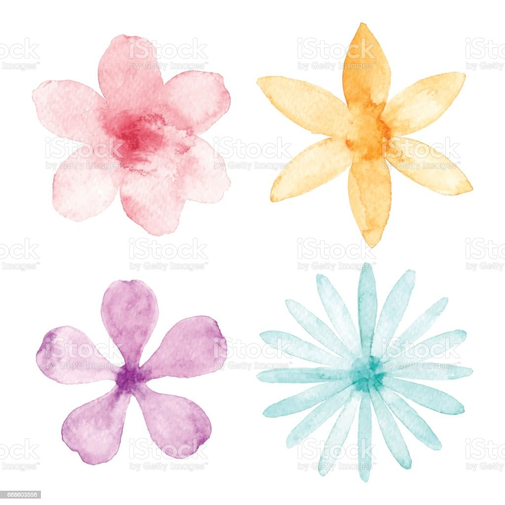 Watercolor Flowers vector art illustration